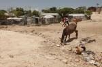 Haiti tent camp