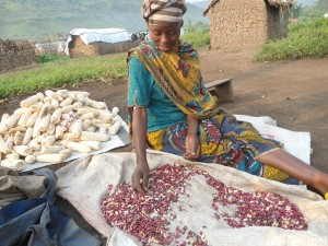 Kabera Christine, a resident of Mubimbi camp near Minova, DR Congo, sorts beans that were harvested from a community garden. In January 2015, MCC's partner Eglise du Christ au Congo (ECC) began a three-year project to help people who have been displaced from their homes grow their own food.
